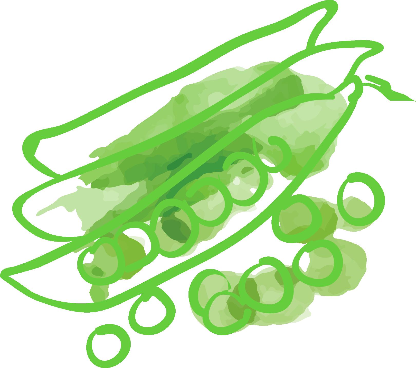 illustrazione_cibo 6